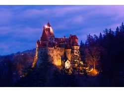 3 Days Vampire Tour in Transylvania Departing from Cluj Napoca Including The Ritual of Killing of a Living Dead