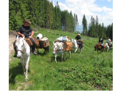 Horse riding to Izvorul Oltului for 2