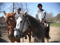 Horse riding lesson for 2 in Sibiu