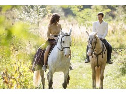 Horse riding lesson in Bucharest for 2